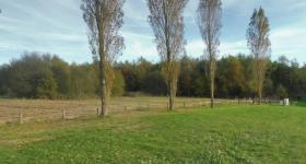 Le parc du Domaine du Bois de l'Arc - Vue 2